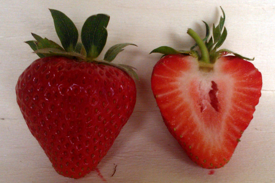 Erdbeersorte Elegance