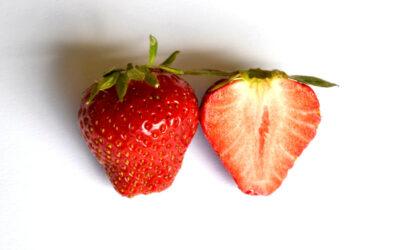Erdbeersorte Darselect
