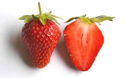 Empfohlene Erdbeersorten im geschützten Anbau
